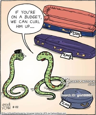 snakes cartoons